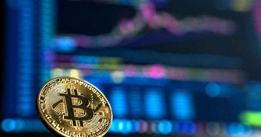 Beginner's Guide for Cryptocurrency Gambling